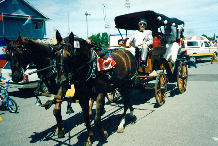 Horse and carriage arriving at Optimist Park after the Canada Day Parade, Niagara Falls (image/jpeg)