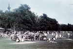 (Thumbnail) Marching Band at a Picnic in Queenston Heights Park (image/jpeg)