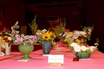 (Thumbnail) 63rd Annual Rose and Flower Show (image/jpeg)