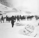 (Thumbnail) Horse and Sleigh rides were available to cross the Ice Bridge in the Niagara River (image/jpeg)