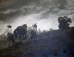 (Thumbnail) Plowing the field with horses (image/jpeg)