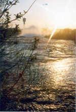 (Thumbnail) Upper Niagara River from Three Sisters Islands Minolta Tower in the background (image/jpeg)