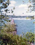 (Thumbnail) Upper Niagara River, with the Minolta Tower in the background (image/jpeg)