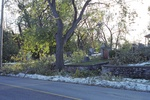 (Thumbnail) Aftermath of Fort Erie Snowstorm, October 12, 2006 - St. Paul's Anglican Church Cemetery (5) (image/jpeg)