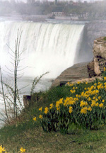 (Thumbnail) Horseshoe Falls with the Canadian Niagara Power Plant in background (image/jpeg)