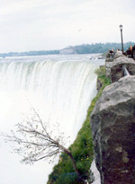 (Thumbnail) Horseshoe Falls with the Toronto Power Plant in the background (image/jpeg)