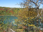 (Thumbnail) Fall Colours : Niagara Gorge and Whirpool (image/jpeg)