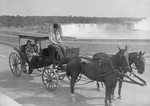 (Thumbnail) Honeymoon couple taking a horse and carriage ride over the Rainbow Bridge (image/jpeg)
