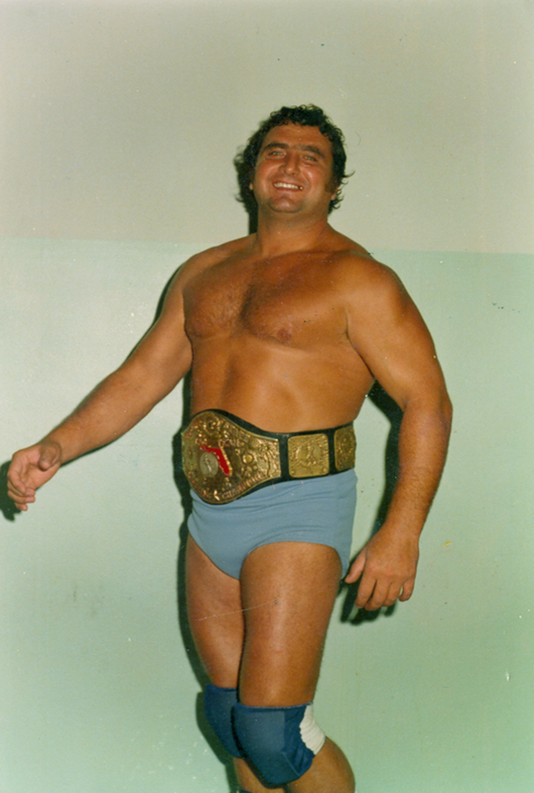 "Niagara Falls Virtual Sports Wall Of Fame - Tony ""Cannonball"" Parisi