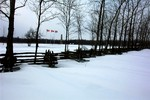 (Thumbnail) Chippawa Battlefield Memorial in winter (image/jpeg)