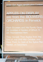 (Thumbnail) Apples on Display at the Victoria Avenue Library (image/jpeg)