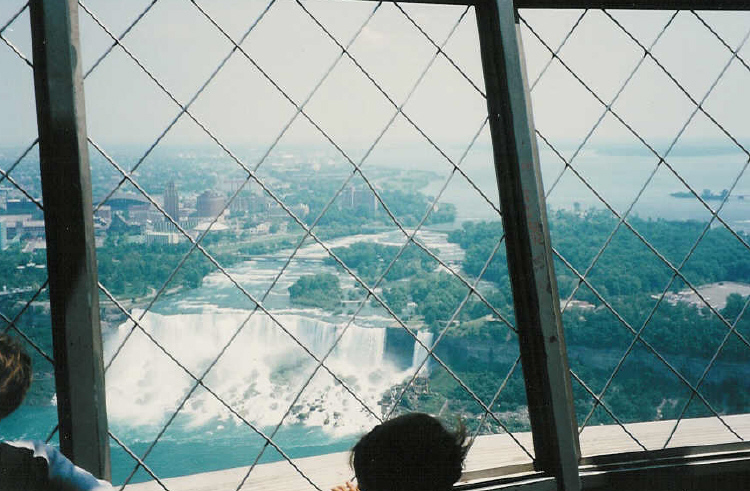 Aerial View of the American Falls from the Skylon Tower (image/jpeg)