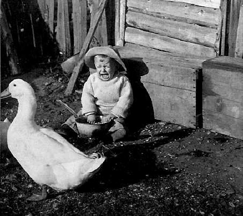 Crying baby with a goose (image/jpeg)