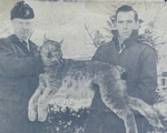 (Thumbnail) Conservation Officer A Roy Muma of the Ontario Department of Lands and Forests & Fish & Wildlife Niagara area and Reg Pineo with the first lynx known to have been shot in Niagara (image/jpeg)