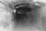 (Thumbnail) The New Scenic Tunnel Behind the Falls (c.1952) (image/jpeg)