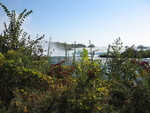 (Thumbnail) Fall Colours at the Brink of Horseshoe Falls (image/jpeg)