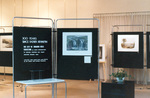 (Thumbnail) 300 Years since Father Hennepin Art Exhibition at the Victoria Avenue Library (image/jpeg)