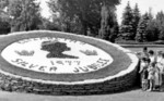 (Thumbnail) Flower bed designed to commemorate Queen Elizabeth II's Silver Jubilee at Queen Victoria Park (image/jpeg)