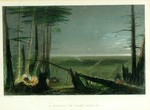 (Thumbnail) A forest on Lake Ontario (image/jpeg)