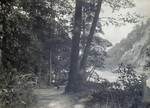 (Thumbnail) Resting place in the Gorge beside the Niagara River (image/jpeg)