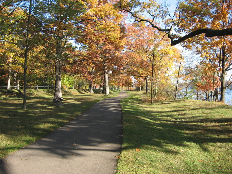 Fall colours along the Niagara River Recreational Trail in Niagara-on-the-Lake (image/jpeg)