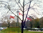 (Thumbnail) Skylon Tower from Queen Victoria Park (image/jpeg)
