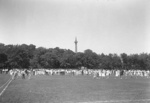 (Thumbnail) Social gathering at Queenston Heights Park; Brock's Monument in background (image/jpeg)