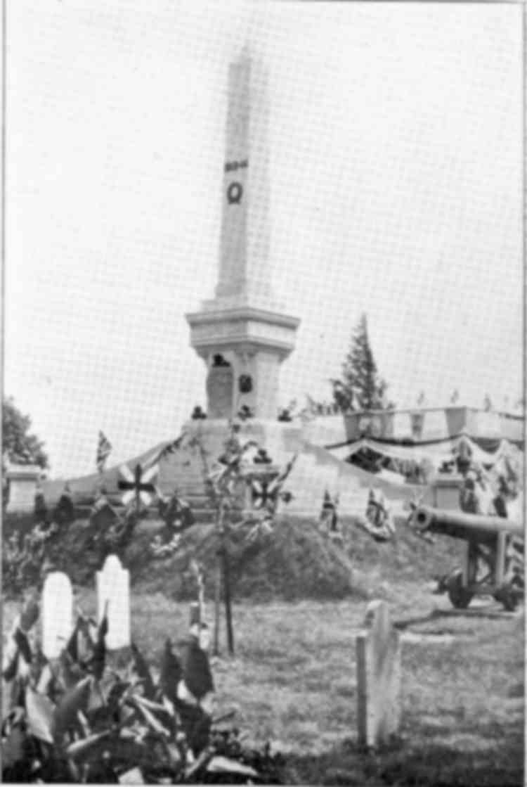 Unveiling of the Lundy's Lane Battle Monument - Niagara Falls, Ont. - 1895 (image/jpeg)