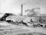 (Thumbnail) Chippawa Roller Mills - W.E. Tench &amp; Son (image/jpeg)