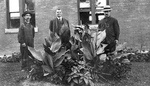 (Thumbnail) 3 Men Standing around some Plants (image/jpeg)