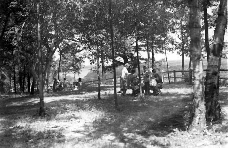 Locust Grove Picnic Area south of Queenston Heights Park (image/jpeg)