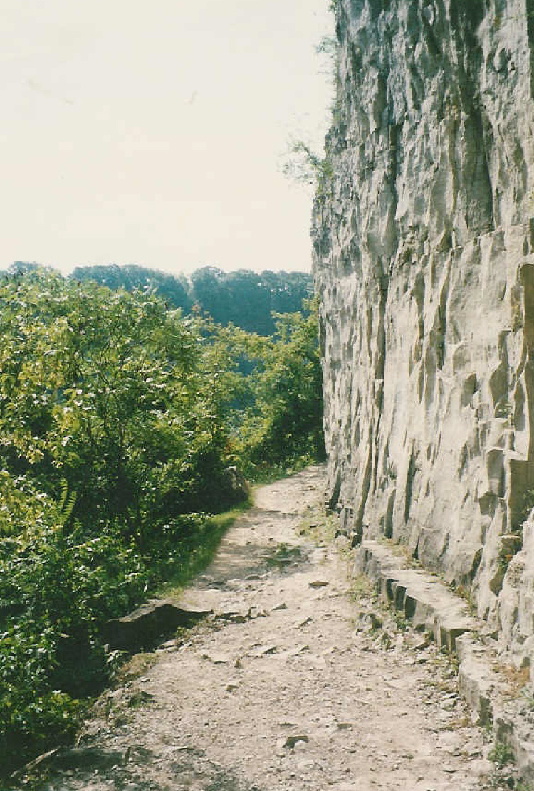 Niagara glen nature trails scaled cliffs of wintergreen for Terrace nature