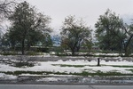 (Thumbnail) Aftermath of Fort Erie Snowstorm, October 12, 2006 - North side of Old Fort Erie (image/jpeg)