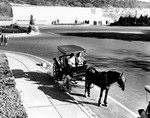 (Thumbnail) Horse drawn tourist carriage at the foot of Clifton Hill - American Falls in background (image/jpeg)