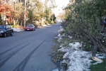 (Thumbnail) Aftermath of Fort Erie Snowstorm, October 12, 2006 - looking east on Highland Ave. (image/jpeg)
