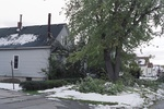 (Thumbnail) Aftermath of Fort Erie Snowstorm, October 12, 2006 - house on Catherine St. (image/jpeg)